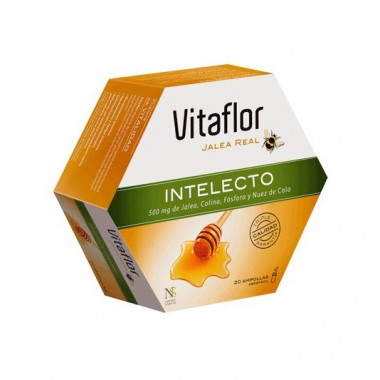 vitaflor-jalea-real-intelecto-10ml-20-ampollas